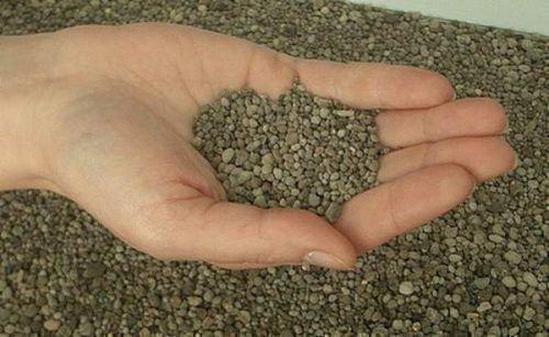 Чем удобрить почву осенью в теплице. Весенняя подготовка к выращиванию огурцов в открытом грунте