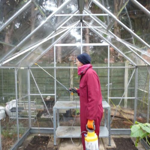 Обработка теплиц медным купоросом осенью. Обработка поверхностей
