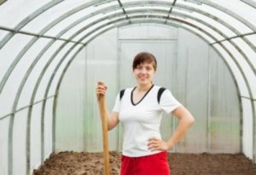 Чем удобрить землю в теплице осенью. Зачем готовить теплицу к зиме?