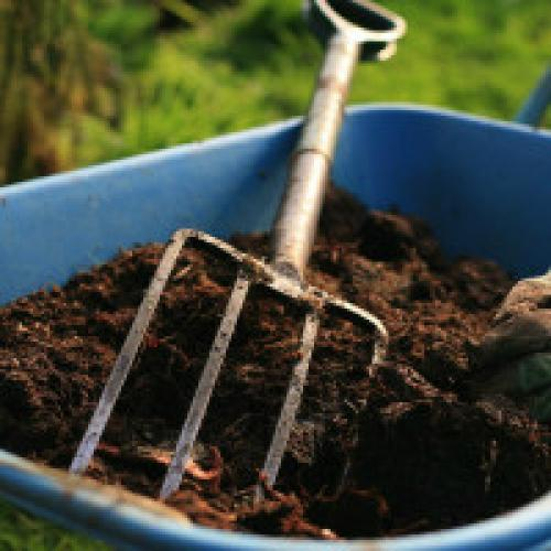 Чем подкормить землю в теплице осенью. Удобрения и подкормка земли в теплице весной и зимой